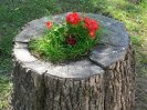 Make A Tree Stump Planter _11